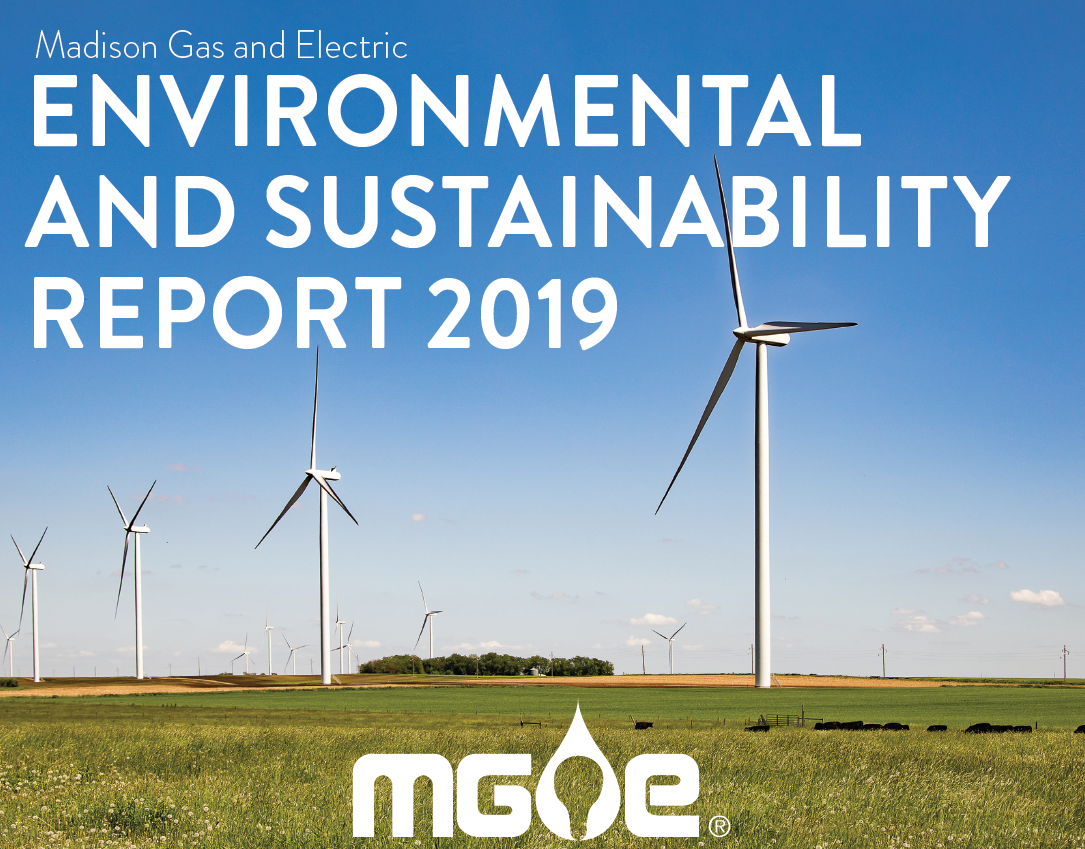 Environmental and Sustainability Report