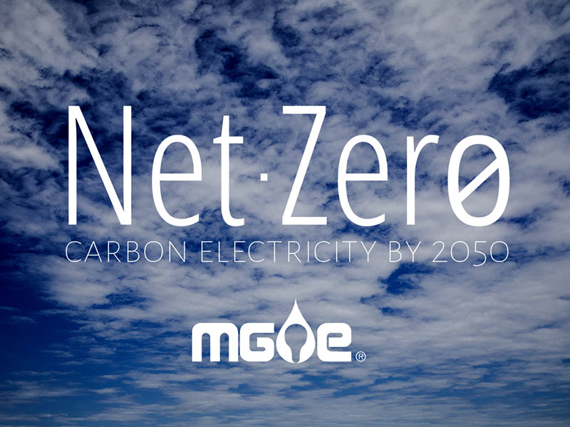 Net-Zero Carbon Electricity by 2050 goal
